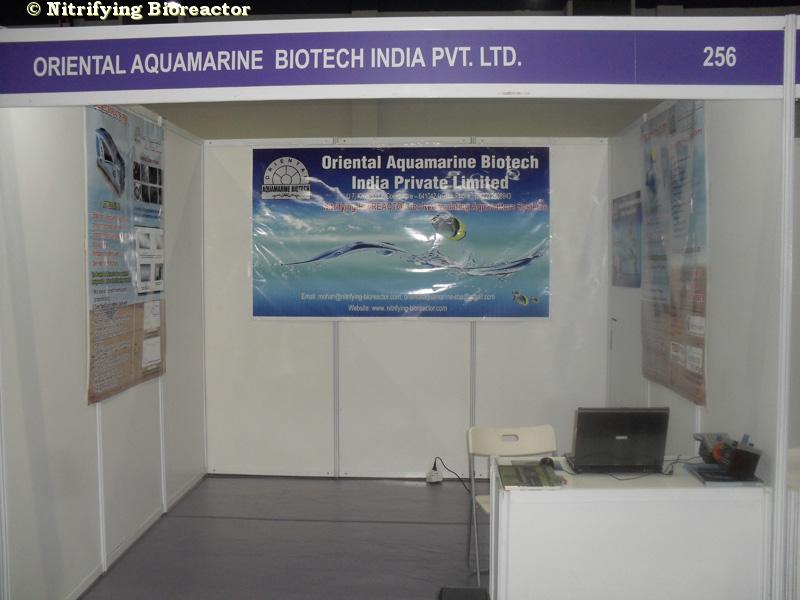 aquamarine model management